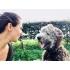 Coaching met hond- Charlie